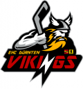 Vikings_logo_transparent